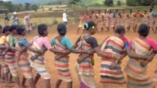 Orissa tribal dance Nov 2009 208 recorded by Kailash Bisht