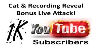 1K Sub Cat & Recording Reveal + Bonus Live Attack