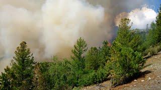 Сибирь и Урал окутал смог от лесных пожаров.
