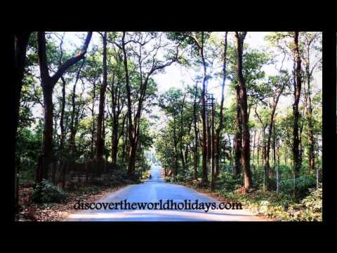 Discover Tripura with Discover The World Holidays ( discovertheworldholidays.com)