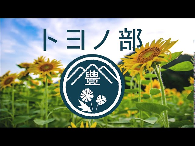 【R423 FLOWER ROAD PROJECT】2020ひまわり