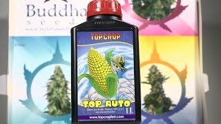 Abono líquido TOP AUTO para cultivo de MARIHUANA AUTOFLORECIENTE TOP CULTIVO 37