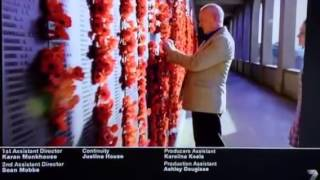 Home and away Gallipoli centenary Alf Stewart