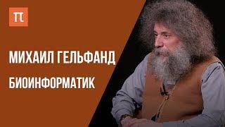 видео: Современная теория эволюции — интервью с биоинформатиком Михаилом Гельфандом