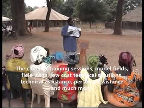 Farmers Club in Guinea-Bissau