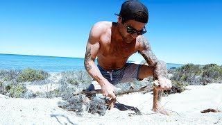 GIANT CRAYFISH CATCH AND COOK Stick Spear Fail With $20 Knife (Amazing Dolphins) - Ep 119
