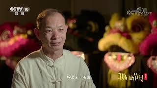 [我们的节日-2020春节]故事一:醒狮  CCTV科教