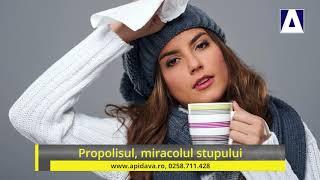propolis pentru tratamentul viermilor)