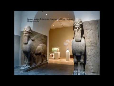 Museo Metropolitano de