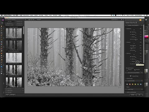Black and White Conversion | Affinity Photo and Silver Efex Pro 2