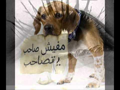 نفسي يا عالم عبد الباسط حمودة