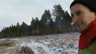 Художественный фильм ЖИЗНЬ И РАБОТА В ЛЕСУ 2 серия
