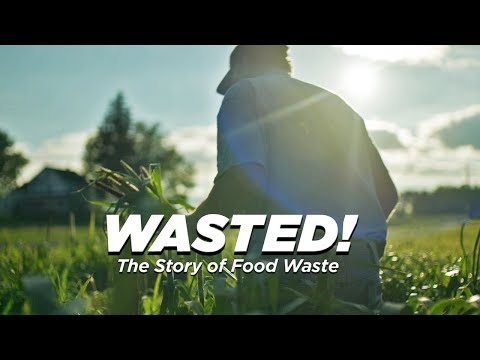 wine article The food waste elimination movement Chefs are changing the world