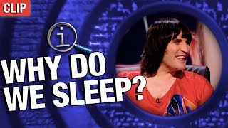QI | Why Do We Sleep?