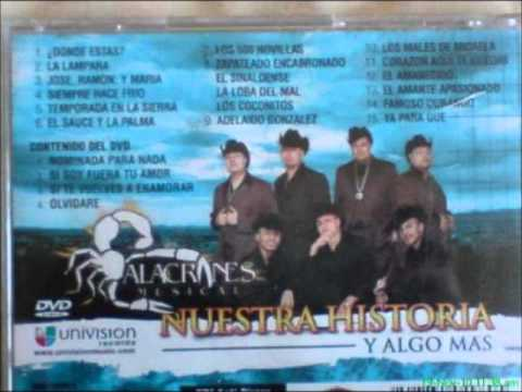 alacranes musical adelaido gonzalez.wmv