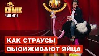 Как страусы высиживают яйца – Кирилл Жаботинский – не вошло в эфир – Комик на миллион | ЮМОР ICTV