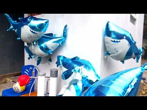 MEMBUAT BALON TERBANG - QYLA IKHLAS MELEPAS BALON BABY SHARK & MAMA SHARK, BABY SHARK DANCE
