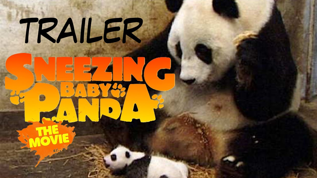 sneezing baby panda the movie trailer italiano youtube