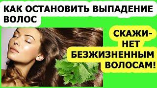 Уход за волосами Маска из крапивы от выпадения волос Скрабы ополаскиватели отвары