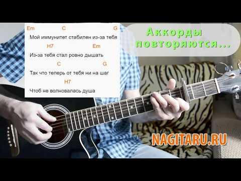 Тима Белорусских - \