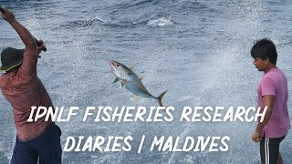 IPNLF Fisheries Research Diaries | Maldives