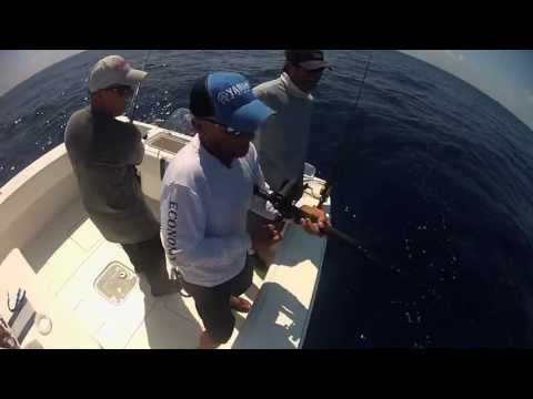 "Sportsman's Adventures: ""Sarasota, Florida Offshore"" Season 19 