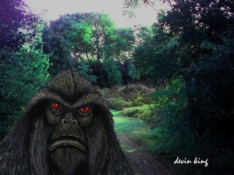 World Bigfoot Radio #65 Pt.2 ~ Summer Expeditions 2018/Jeff S.