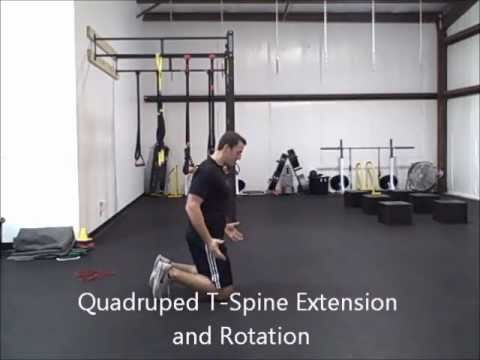 Mobility Drills for Low Back Pain