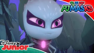 🦎 Spirit Animals | PJ Masks | Disney Junior UK