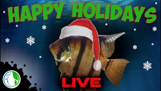 HAPPY HOLIDAYS TO ALL MY FISH KEEPING FRIENDS!!!