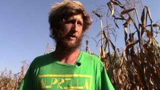 Alprilla Farm's Crop Rotation: Biology, Not Chemistry
