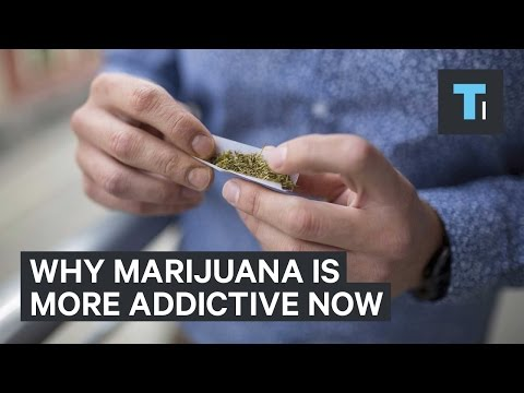 Why marijuana is more addictive now