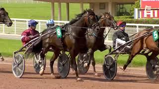Vidéo de la course PMU PRIX DU LOUVRE
