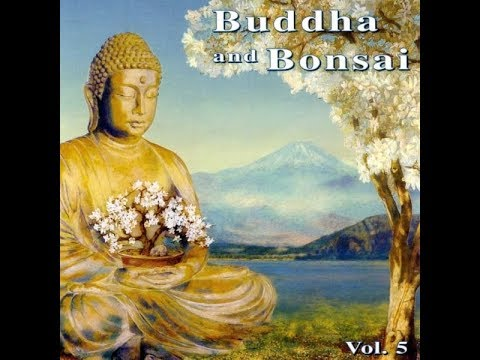 Oliver Shanti & Friends- Buddha and Bonsai vol.5