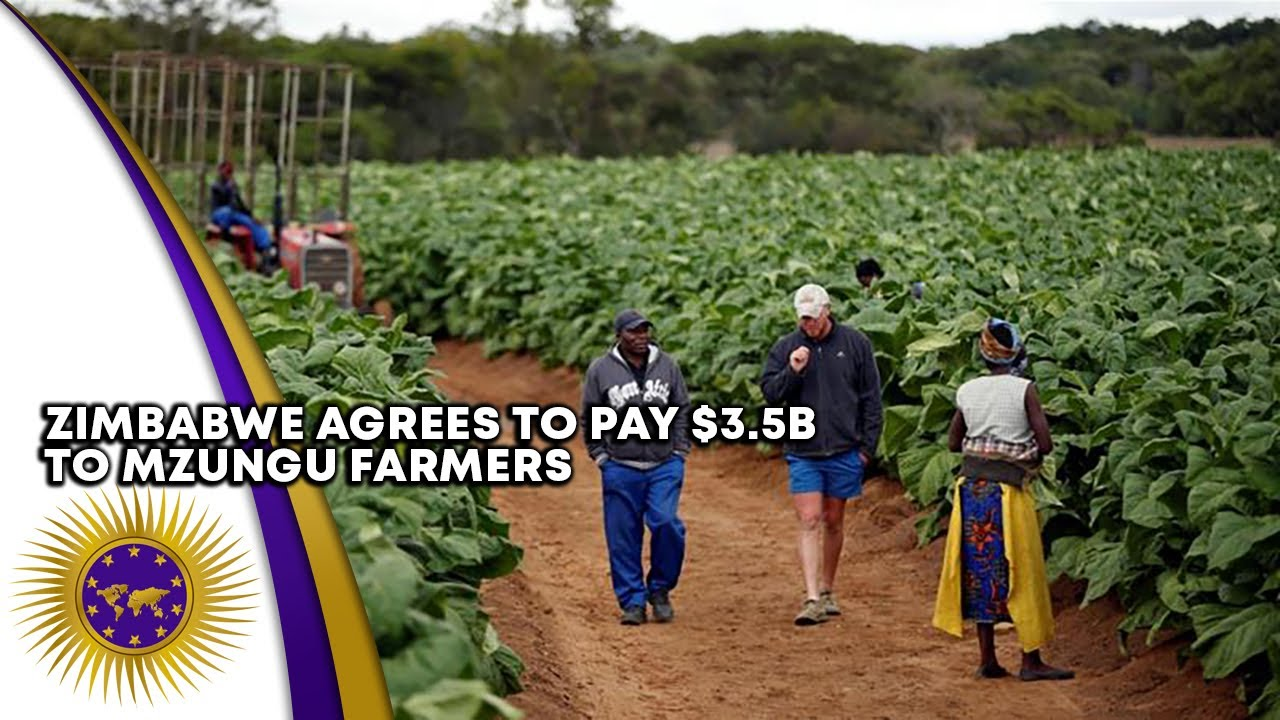 Zimbabwe Agrees To Pay $3.5B To Compensate 4500 Mzungu Farmers