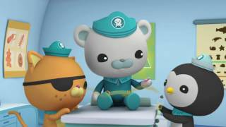 Octonauts and the Jellyfish Bloom - Full Episode