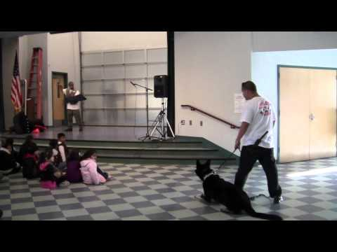Royal Dog Training- Rio Del Norte Elementary School