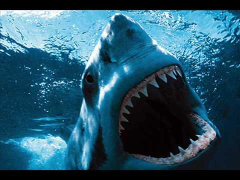 Great White Shark - Get Up [Tribute] (HQ)