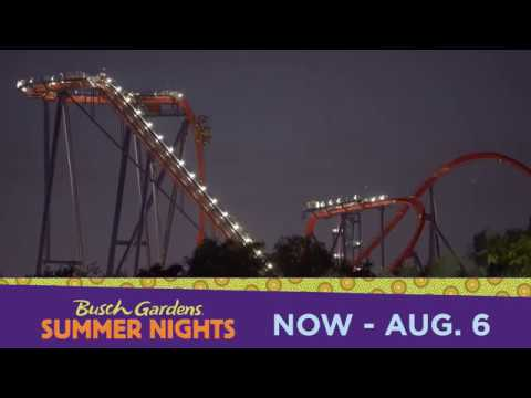 Party Louder And Play Later At Summer Nights Busch Gardens Tampa Bay Youtube