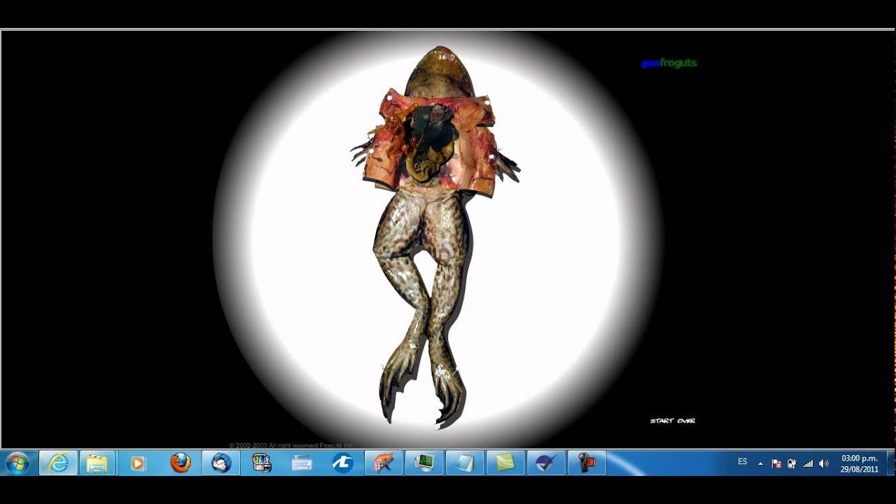 Disección virtual de una rana.avi - YouTube