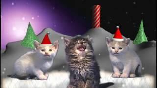 Рождественская песня котов