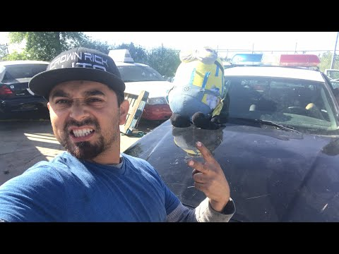 live-crown-rick-auto-q-a-police-patrol