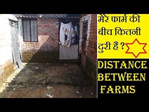 poultry-farm-distance-in-my-farm-|-abhishek-singh-poultry