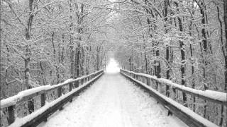 Sadistik(ft.Ceschi)-A Long Winter(Lyrics on screen)