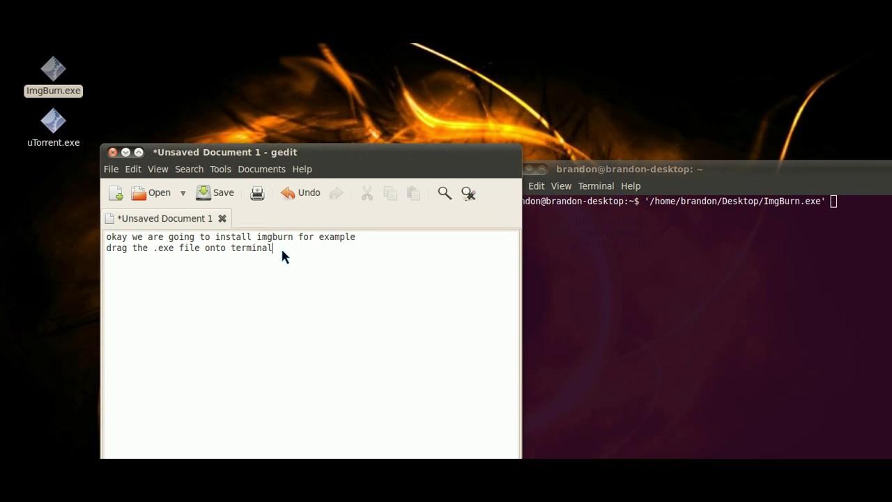 install  exe on ubuntu