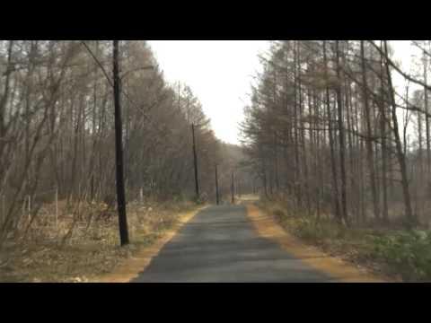 北海道道43号大沼公園鹿部線:国...