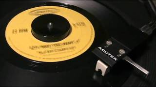 Dave Clark Five - Any Way You Want It - [simulated STEREO]