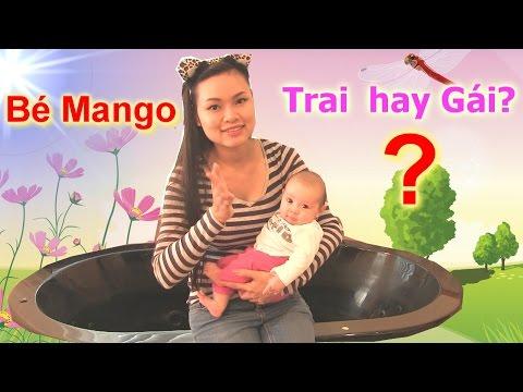 Thông Báo Giờ Đăng Mini Game Tuần 8 & Xem Em Bé Mango (Chị Bí Đỏ Tặng Quà Thành Viên Kênh )