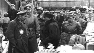 Generals discuss during 11th German Panzer Division surrender to Allied Forces in...HD Stock Footage