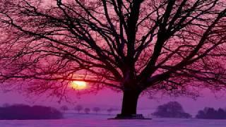 Richard Clayderman Love song in winter Winter Sonata